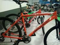 Mountain bike - MEGAMO