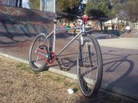Singlespeed-Fixie - Fuji