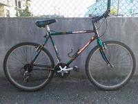 Mountain bike - Fairarrow